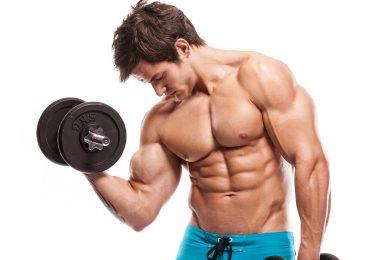 Exercices de musculation : comment savoir quels muscles travaillent ?
