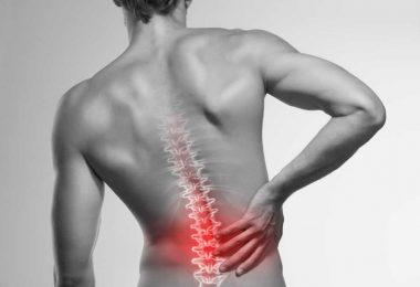 Comment prévenir le mal de dos en musculation et au quotidien ?